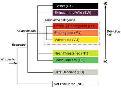 categories_chart_global_v3